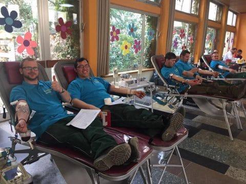 Blutspenden bei GELO